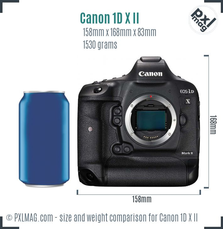 Canon EOS-1D X Mark II dimensions scale