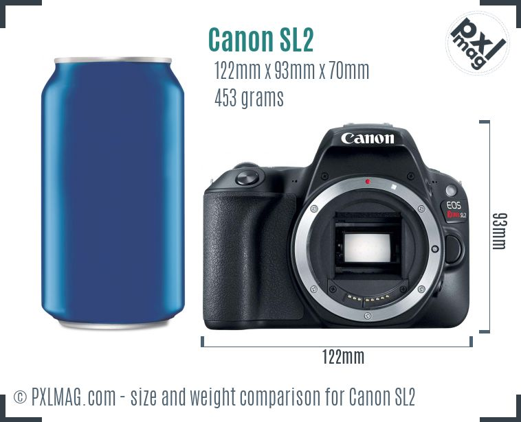 Canon EOS Rebel SL2 dimensions scale
