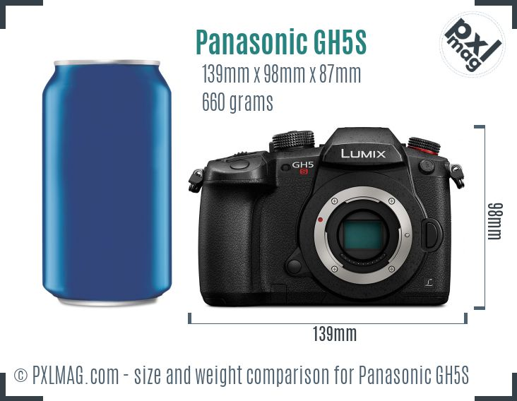 Panasonic Lumix DC-GH5S dimensions scale