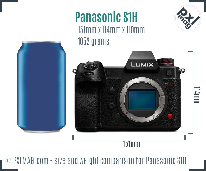 Panasonic Lumix DC-S1H dimensions scale