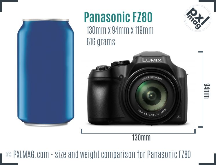Panasonic Lumix DMC-FZ80 dimensions scale