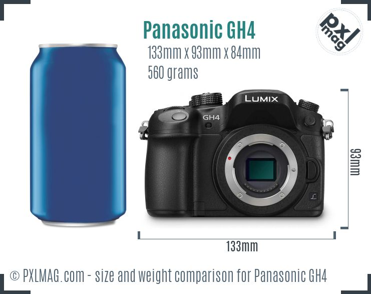 Panasonic Lumix DMC-GH4 dimensions scale