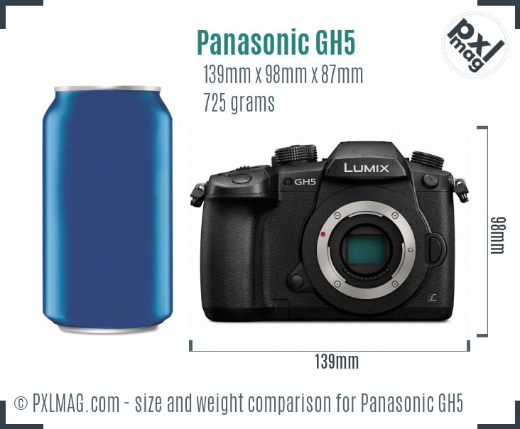 Panasonic Lumix DMC-GH5 dimensions scale
