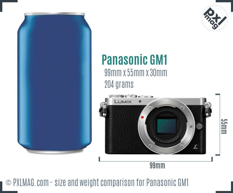 Panasonic Lumix DMC-GM1 dimensions scale
