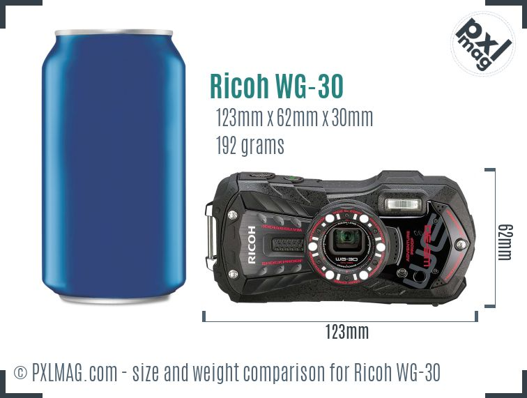 Ricoh WG-30 dimensions scale