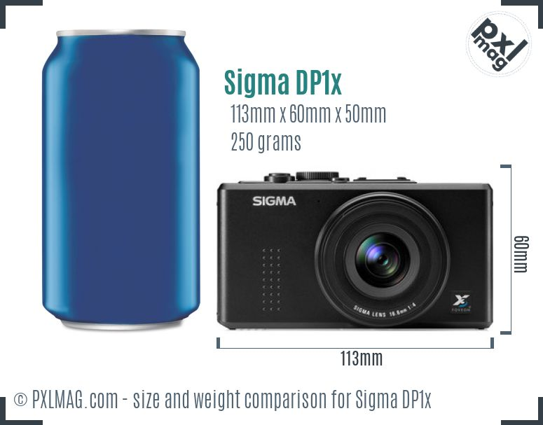 Sigma DP1x dimensions scale