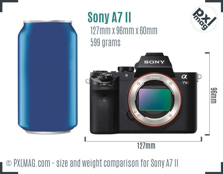 Sony Alpha A7 II dimensions scale