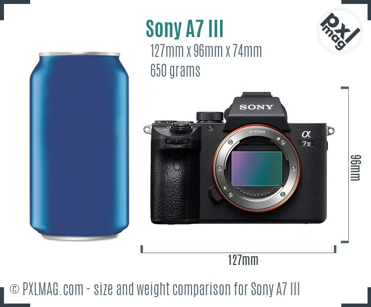 Sony Alpha A7 III dimensions scale