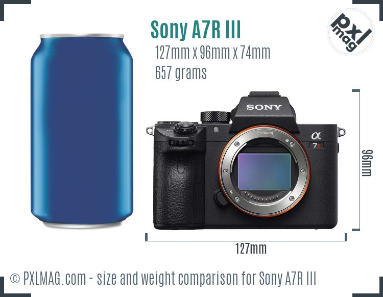 Sony Alpha A7R III dimensions scale
