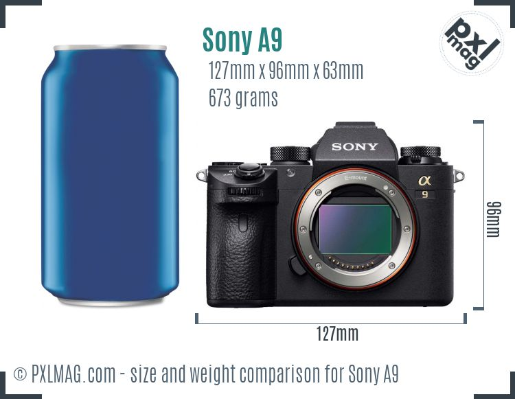 Sony Alpha A9 dimensions scale