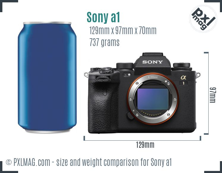 Sony Alpha a1 dimensions scale