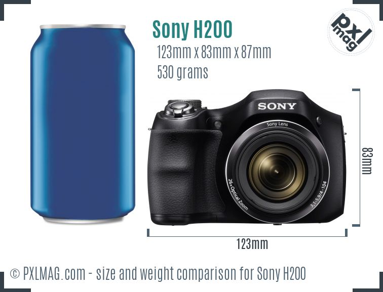 Sony Cyber-shot DSC-H200 dimensions scale