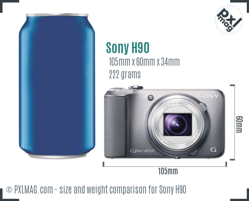 Sony Cyber-shot DSC-H90 dimensions scale