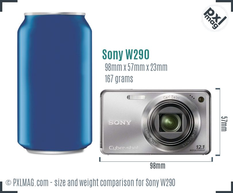 Sony Cyber-shot DSC-W290 dimensions scale