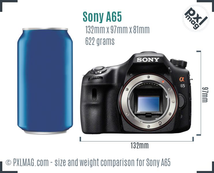 Sony SLT-A65 dimensions scale