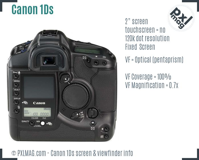 Canon EOS-1Ds screen and viewfinder