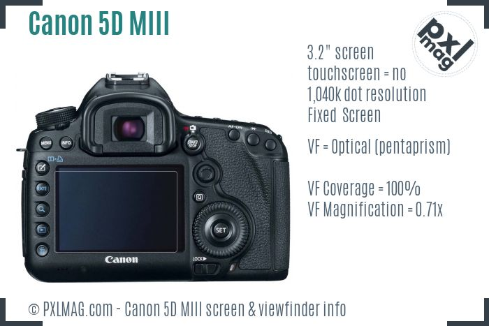 Canon EOS 5D Mark III screen and viewfinder