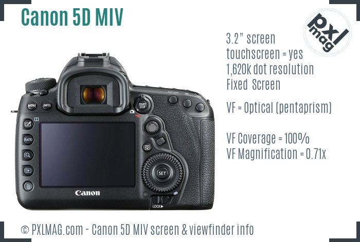 Canon EOS 5D Mark IV screen and viewfinder