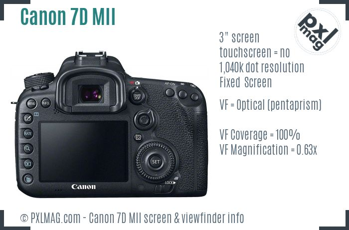 Canon EOS 7D Mark II screen and viewfinder