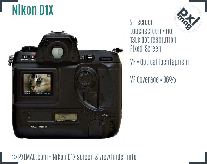 Nikon D1X screen and viewfinder