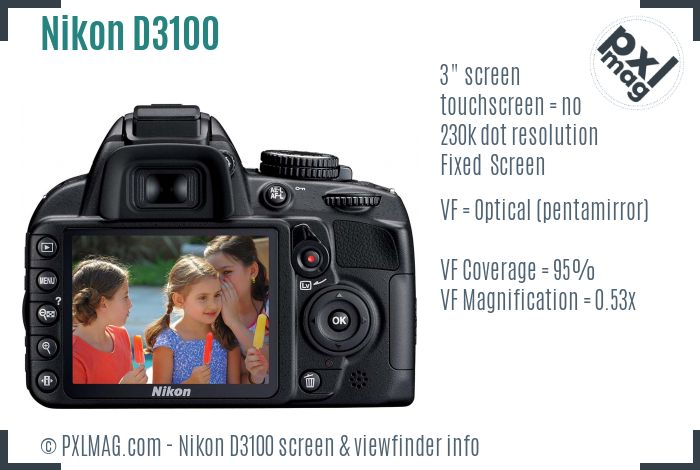 Nikon D3100 screen and viewfinder