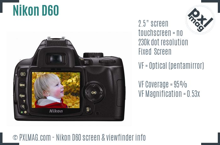 Nikon D60 screen and viewfinder