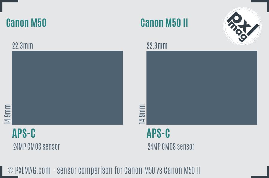 Canon M50 vs Canon M50 II sensor size comparison