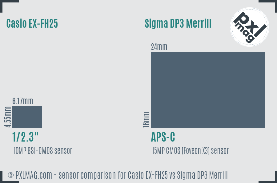 Casio EX-FH25 vs Sigma DP3 Merrill sensor size comparison