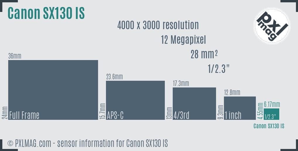 Canon PowerShot SX130 IS sensor size