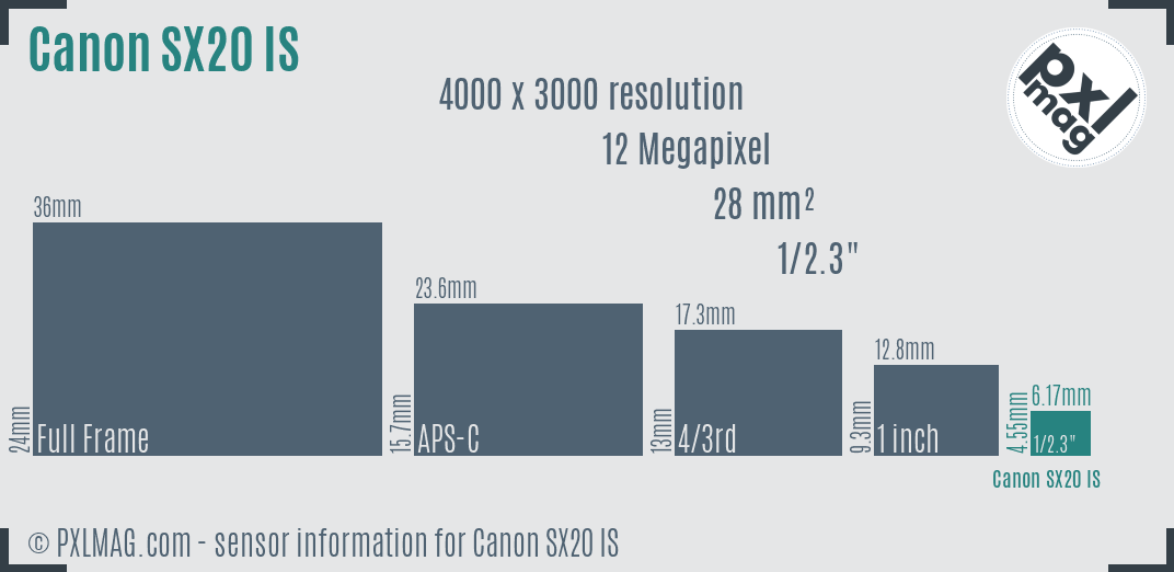 Canon PowerShot SX20 IS sensor size
