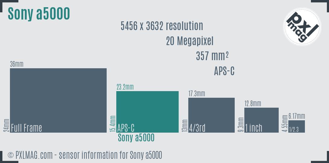 Sony Alpha a5000 sensor size