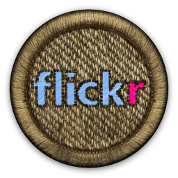 Smugmug CEO wants you to sign up for Flickr PRO
